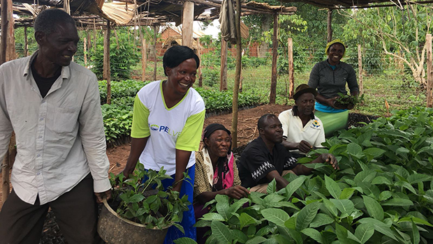 Farming & Income Generating Projects for Suubi