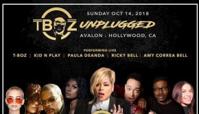 5th Annual T-Boz Unplugged Concert in support of Sickle Cell Disease