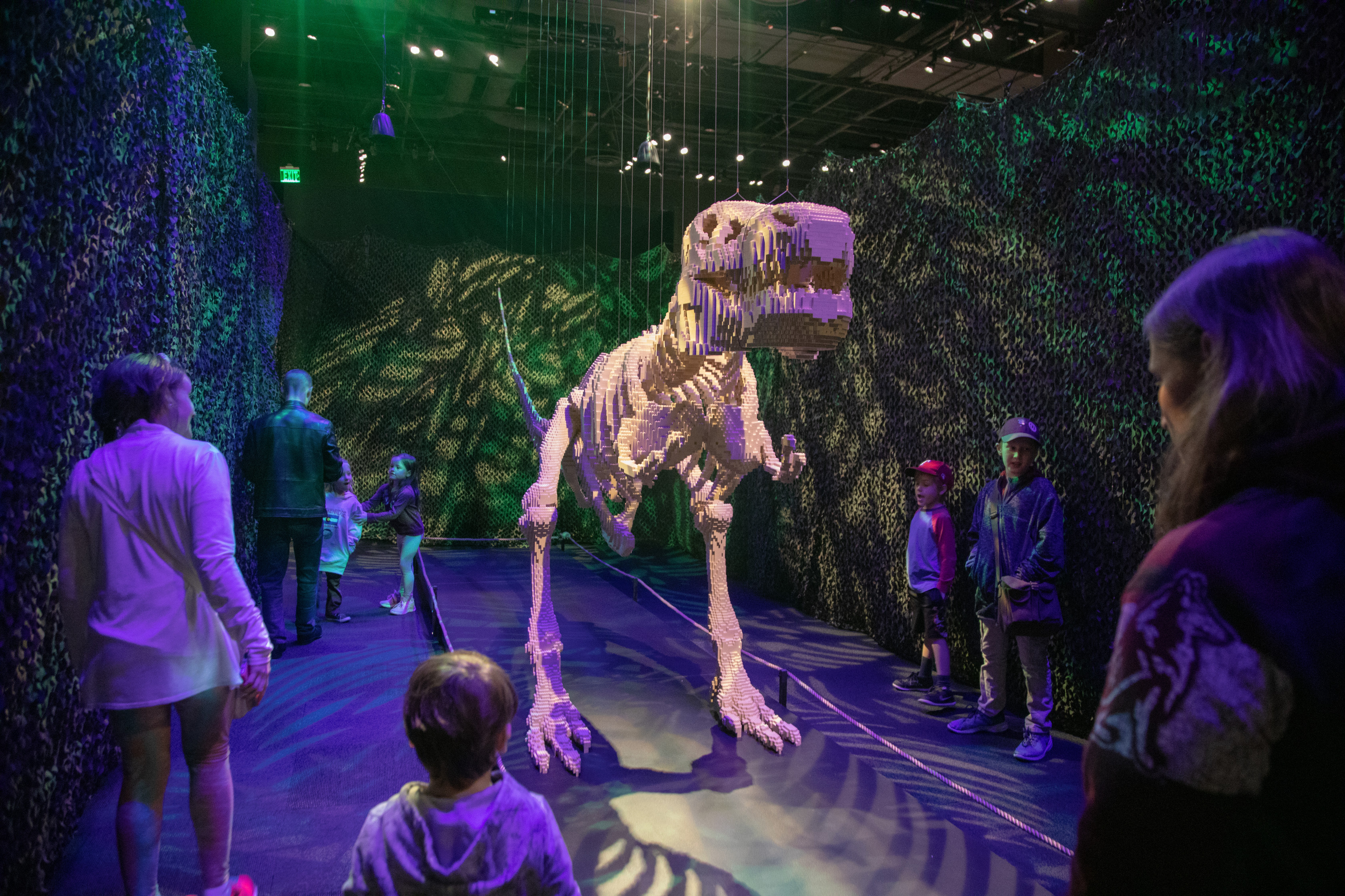 A 20' long T. rex – made of more than 80,000 LEGO® bricks – is a signature piece in The Art of the Brick traveling exhibition (PHOTO CREDIT: JerSean Golatt/Perot Museum of Nature and Science)