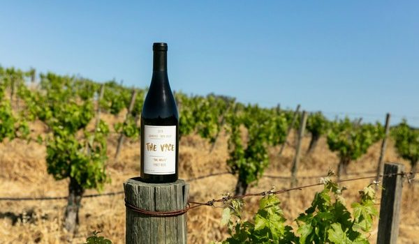 20 Interesting Wine-Related Discoveries For September 2021